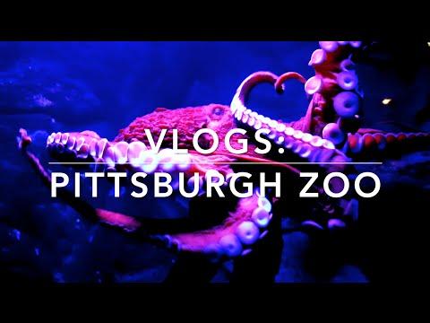 Vlog: EXPLORING PITTSBURGH ZOO