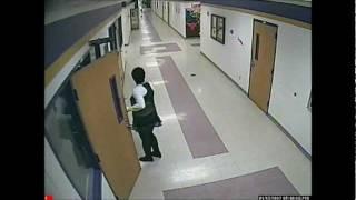 deer runs through high school hallways