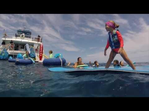 Body Glove Snorkel Trip - Big Island - Hawaii