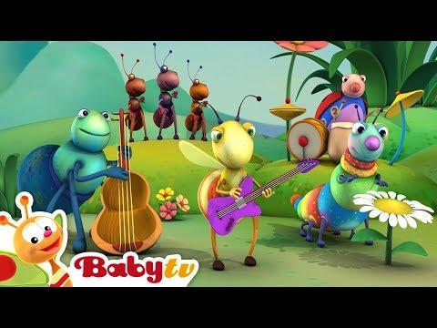 Big Bugs Band - Jammin' in Jamaica | BabyTV