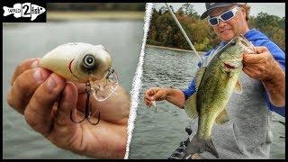 How to Fish Wake Baits for Bass Around Grass