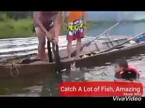 Catch A Lot of Fish, using net fishing  Amazing