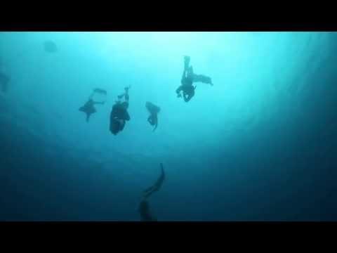 Fusion Freediving & Yoga Bali - Travel Film Makers