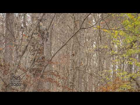 REALTREE EDGE - The Most EFFECTIVE CAMO PATTERN!