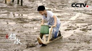 《传承》(第三季) 第七集:迭新| CCTV中文国际