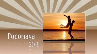 Славянский гороскоп на 2019 год: Росомаха