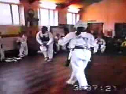 Kim webster Taekwondo mini