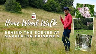 Getting Lost in the Grounds of Britains Finest Manor House - Behind the Scenes at Mapperton Ep 5