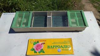 ставим полоски от клеща варроа! Ставим кормушки для пчел!