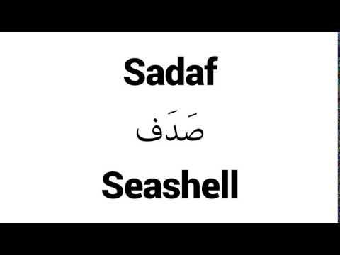 How to Pronounce Sadaf! - Middle Eastern Names