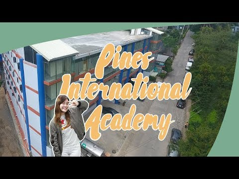 [Study English in the Philippines] PINES ACADEMY - Study In A Better and Homier Campus