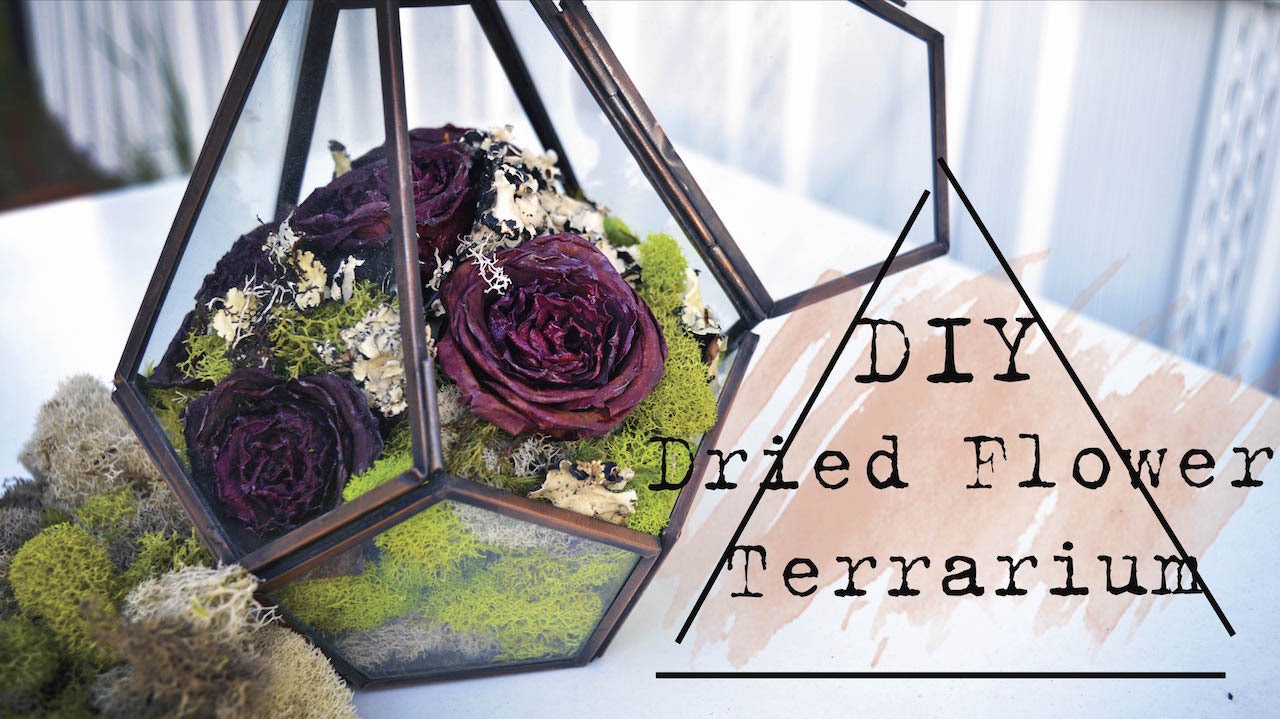 Diy dried flower terrarium youtube solutioingenieria Gallery