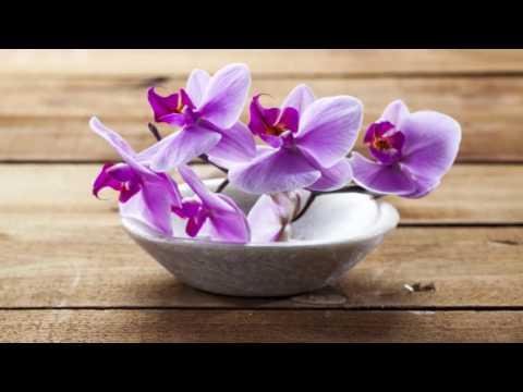 1 HOUR Thai Spa Music For Oriental Massage | Sound Of Thailand