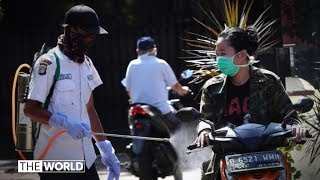 Coronavirus: Epidemiologist questions Indonesia infection figures | The World