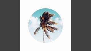 Play Palm Beach