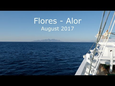 Wonderful Diving in Flores and Alor, August 2017 (4K-Video)