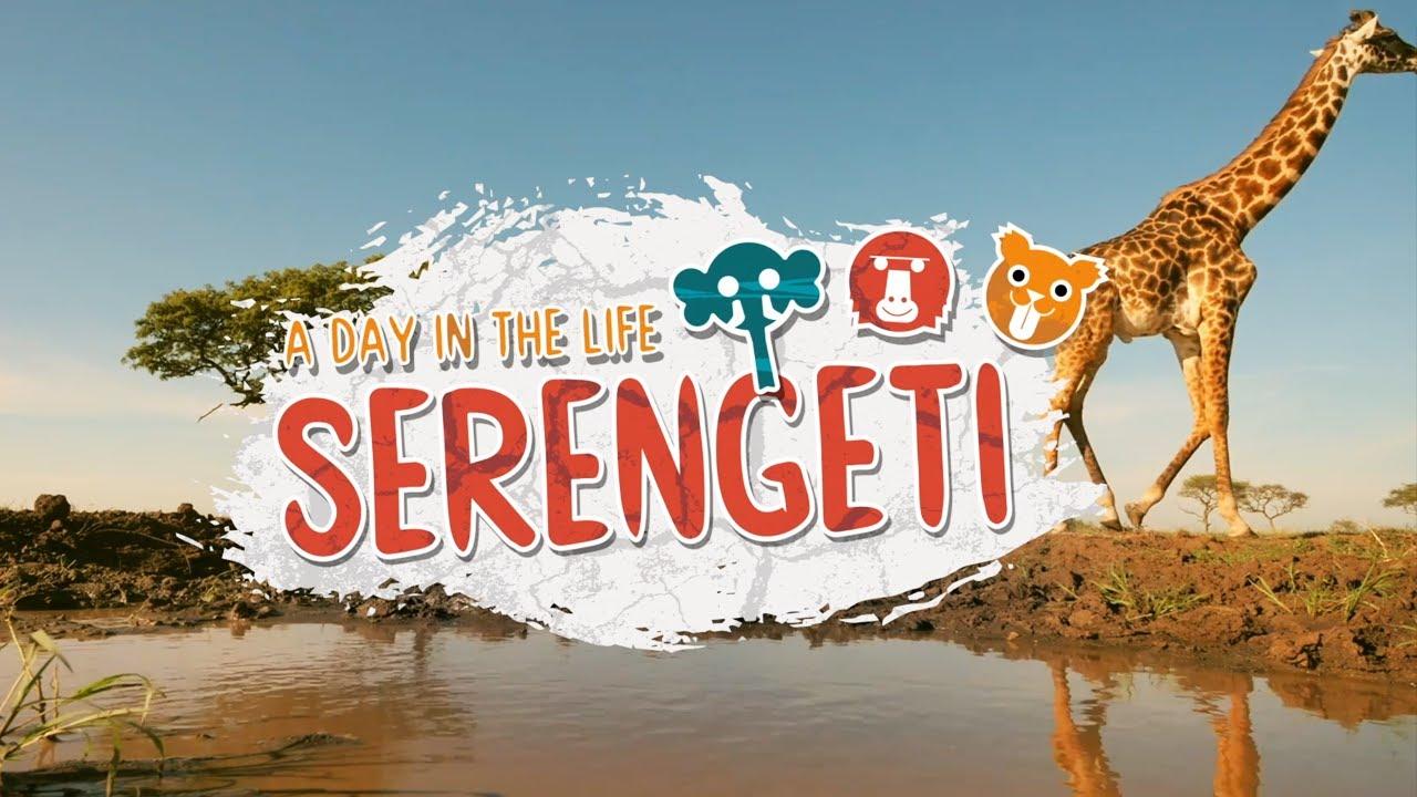 A Day In The Life Of Serengeti Animals | Serengeti II | BBC Earth Kids