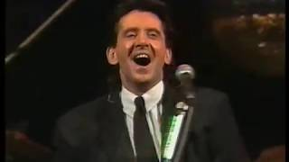 THE SEARCHERS - 30 GLORIOUS YEARS (HULL '91)