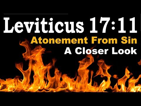 LEVITICUS 17:11 Atonement From Sin – Reply2 One For Israel Tbn Messianic Jews For Jesus Jewish Voice