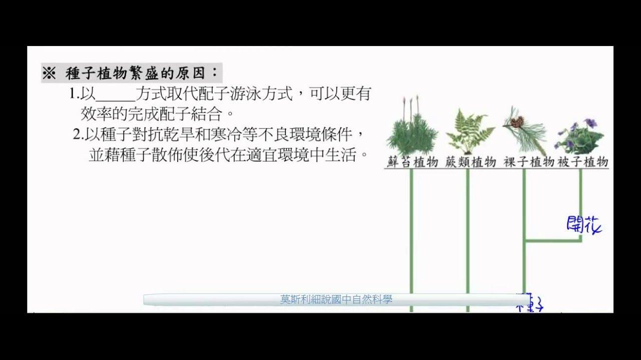 國一生物_種子植物繁盛的原因與植物界的演化樹【國中生物】 - YouTube