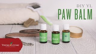 DIY YL Paw Balm | Young Living Essential Oils