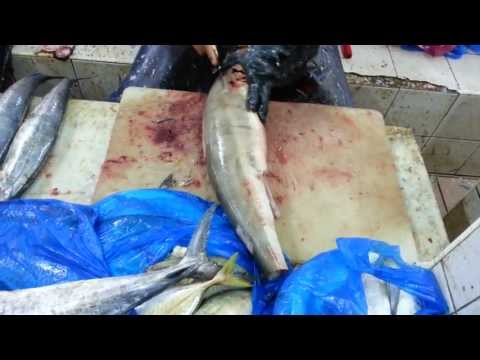 Cutting Gray Shark at Abu Dhabi Fish...