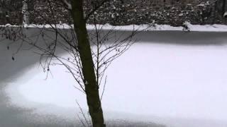 Cour d'eau gelé à Illiers Combray.m2ts