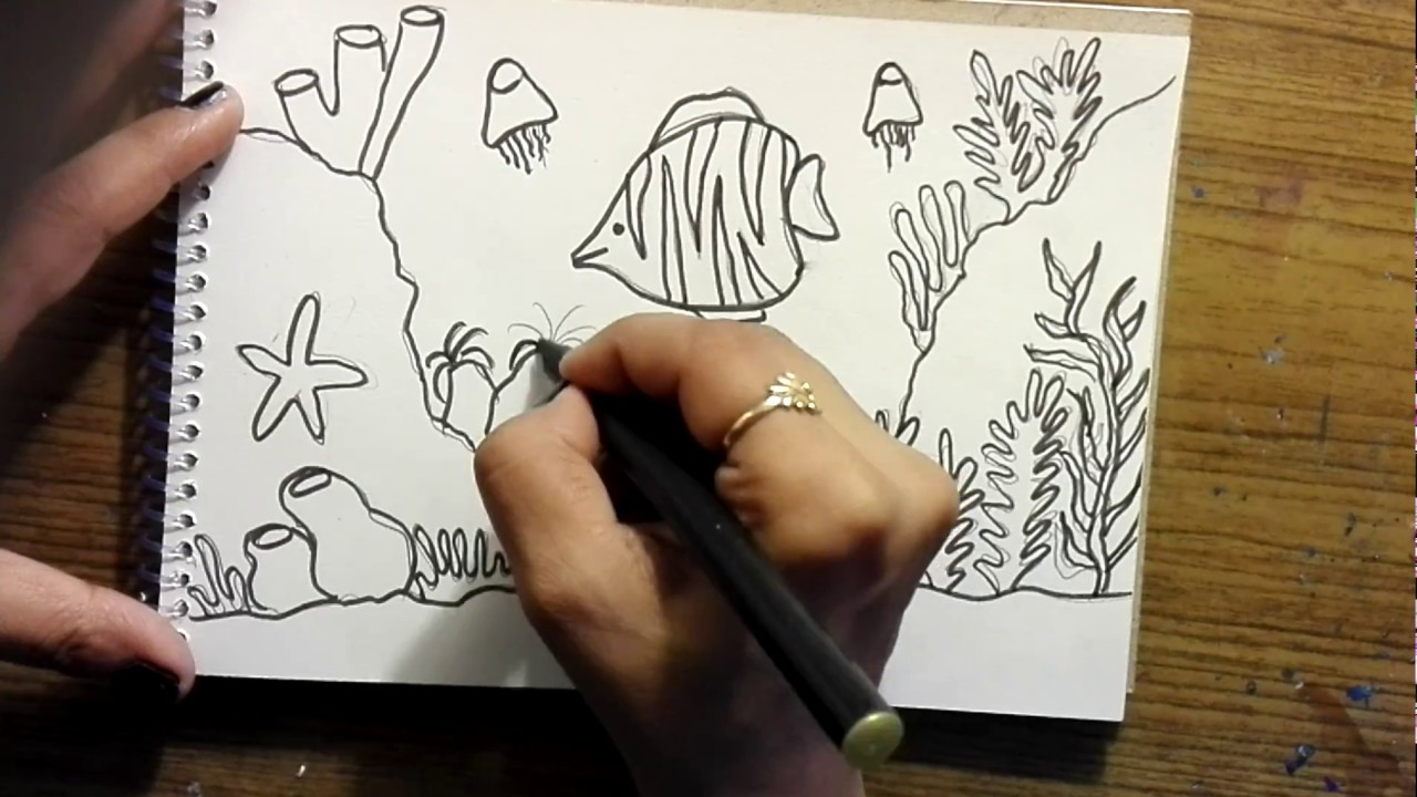 Art Hub How To Draw Sea Animals