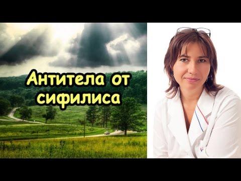 Хронический бронхит - Бронхит - Пульмонология