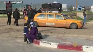 حيوانات غزة.. من الحصار والموت إلى بر الأمان