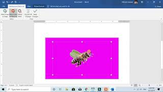 How To Insert Image Into Another Image Using Microsoft Word, powerpoint and excel 2019