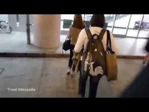 Vietnam: Ho Chi Minh  Arrival at Tan Son Nhat Airport・Airlines, Bus and Terminal 2016