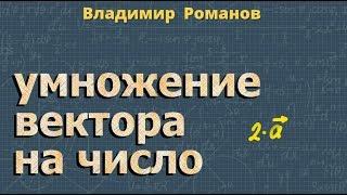 умножение ВЕКТОРА на число + теорема о средней линии ТРАПЕЦИИ