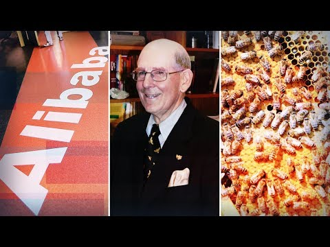 THE BOTTOM LINE: Gary Shilling On Expensive Stocks And Alibaba Vs. Amazon