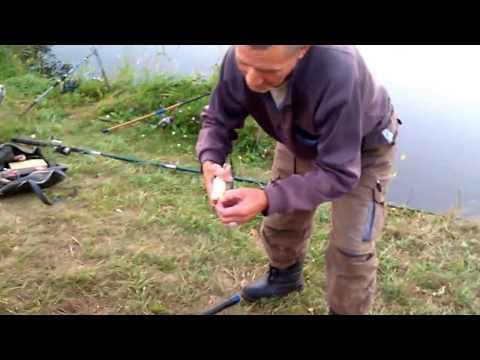 ловля на поплавочную удочку толстолобика на ютубе