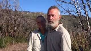 Pct Video 22 - 5/25/14 - Eriodictyon Parryi Or Poodle-dog Bush!