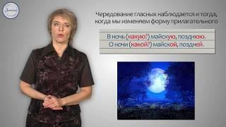 Уроки русского Правописание гласных