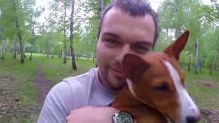 GoPro: Тренировки Ричи [Басенджи] || Rich Training [Basenji]