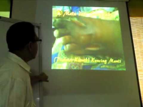 BIODISC ORIGINAL QNET: TESTIMONIAL BY Dr.Jamaluddin Abd Jalal (MALAYSIA)
