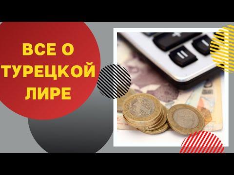 Где обменять турецкую лиру, с какой валютой ехать в Турцию и где смотреть актуальный курс лиры