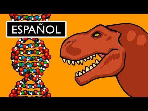 ¿Qué es el ADN y Cómo Funciona?