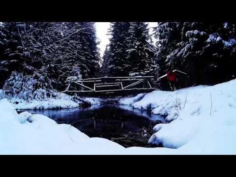 Schellerhau trail run