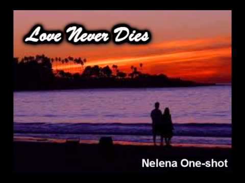 Love Never Dies Nelena One shot