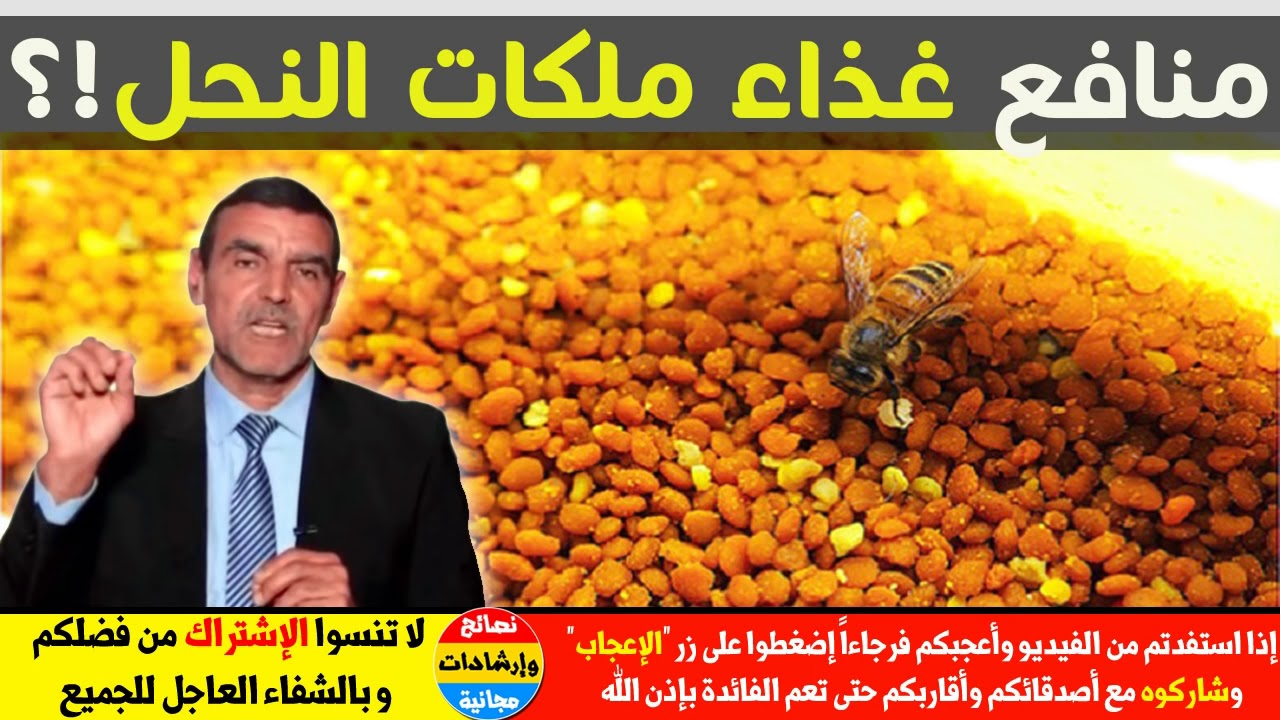 فوائد غذاء ملكات النحل واستخداماته هل حقا هو أكثر جودة من العسل مع الدكتور محمد الفايد Youtube