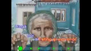 KARAOKE STEFAN HRUSCA - RUGA PENTRU PARINTI
