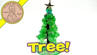 Amazing Christmas Tree, Toysmith....Grows In One Day! | Kids Meal Toys | LuckyPennyShop.com