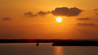 لامو.. هواها عربي HD | الجيزرة الوثائقية