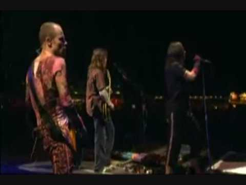 Red Hot Chili Peppers live - Custard Pie riff + Fortune Faded (Part 5/16)