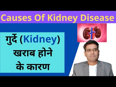 Causes Of Kidney Failure In Hindi Causes Of Kidney Diseases Acute Renal Failure À¤¹ À¤¦ À¤® Youtube