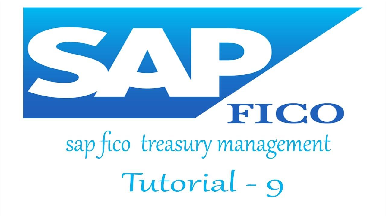 sap fico treasury management tutorial for fresher